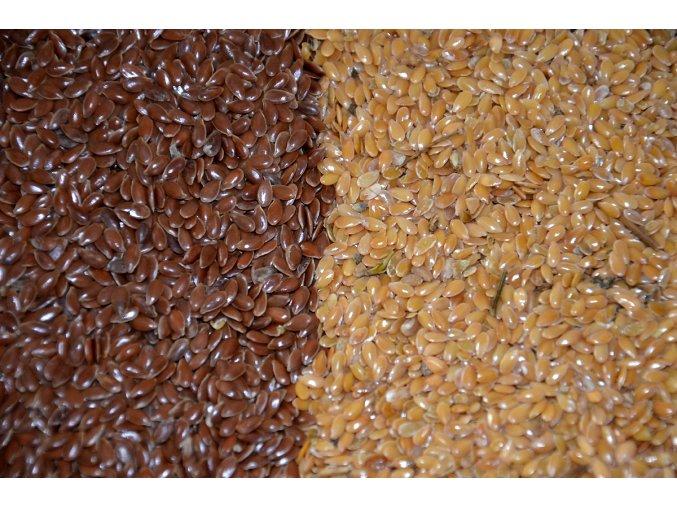 Lněné semínko hnědé - Len hnědý