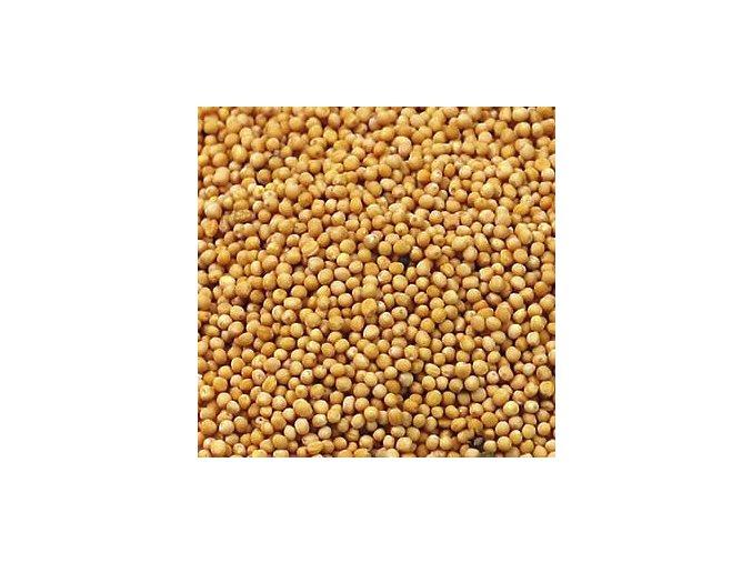 Hořčičné semínko bílé - sareptská hořčice
