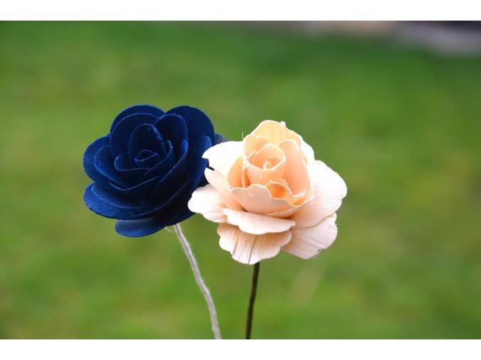 Růže dřevěná - modrá
