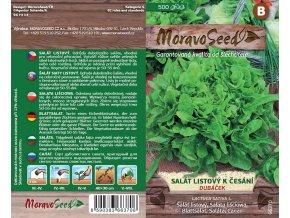 66370 Salat Dubacek