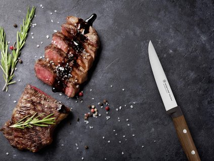 sada steakovych nozu na steak 4 ks urban farmer wusthof solingen 9401