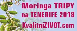 MORINGA trip TENERIFE 2019