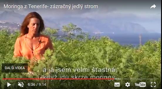 Moringa - dokument rakouske TV z Tenerife