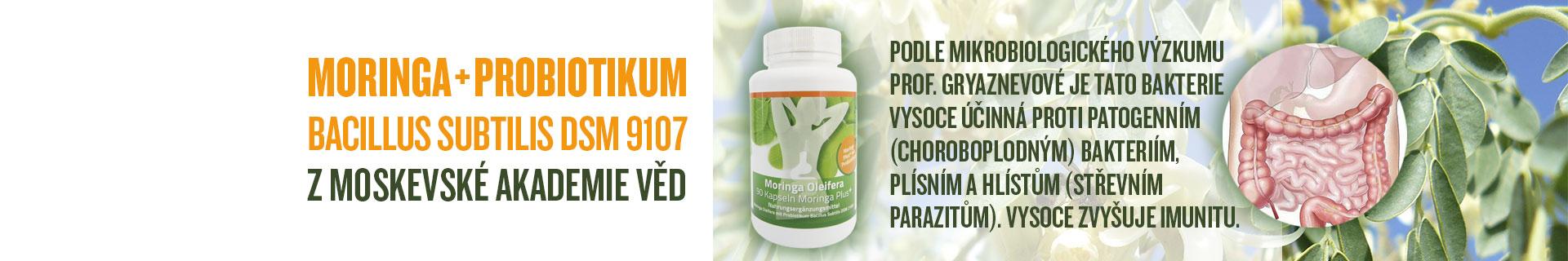 Moringa plus probiotikum
