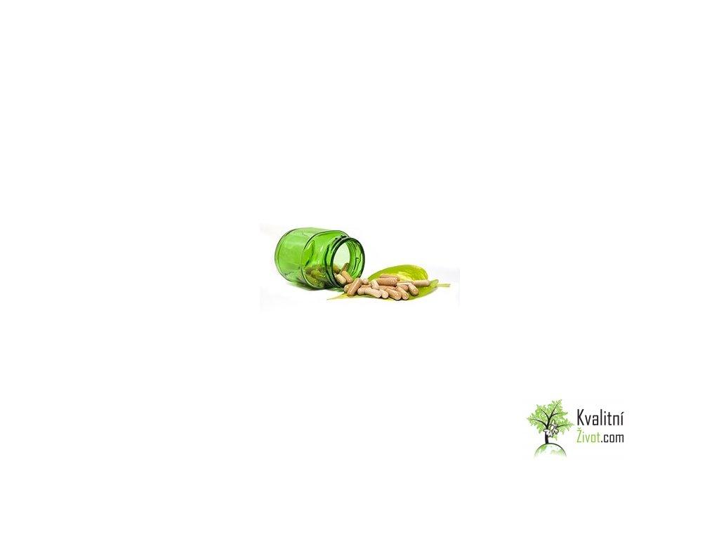 BIO Moringová semena z TENERIFE v prášku - kapsle