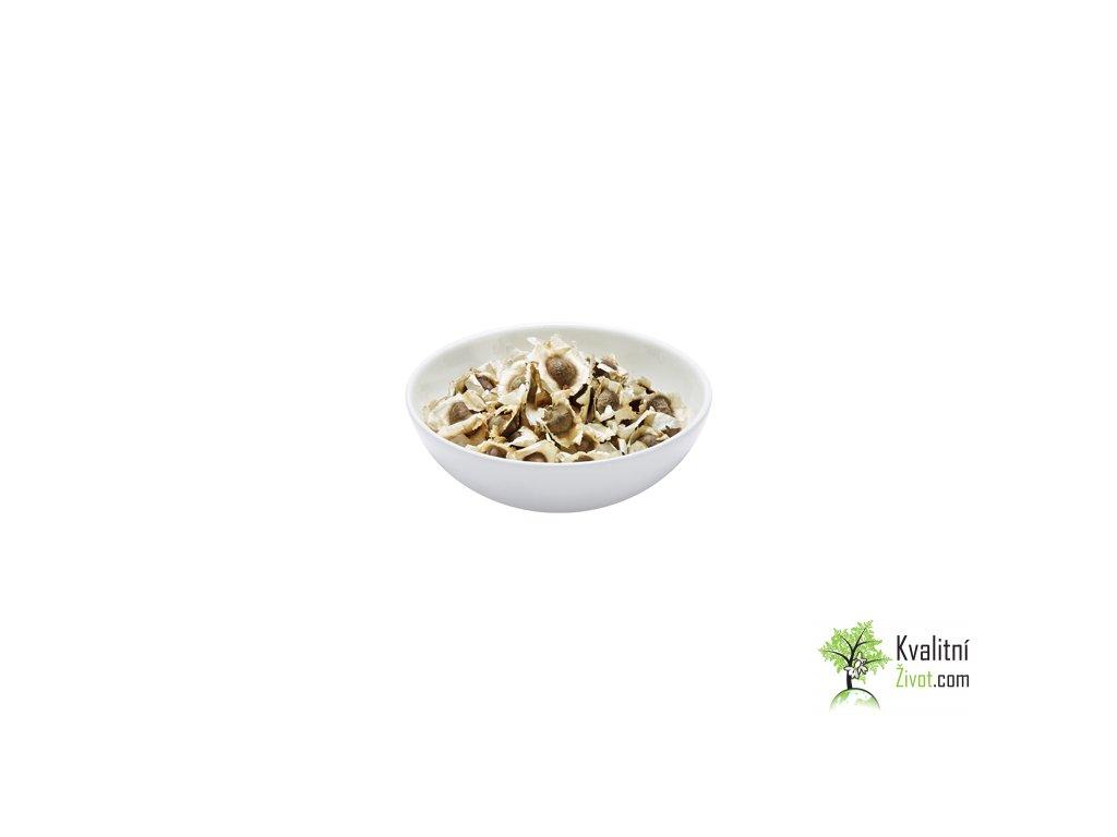 BIO Moringa z TENERIFE, semena 10 ks