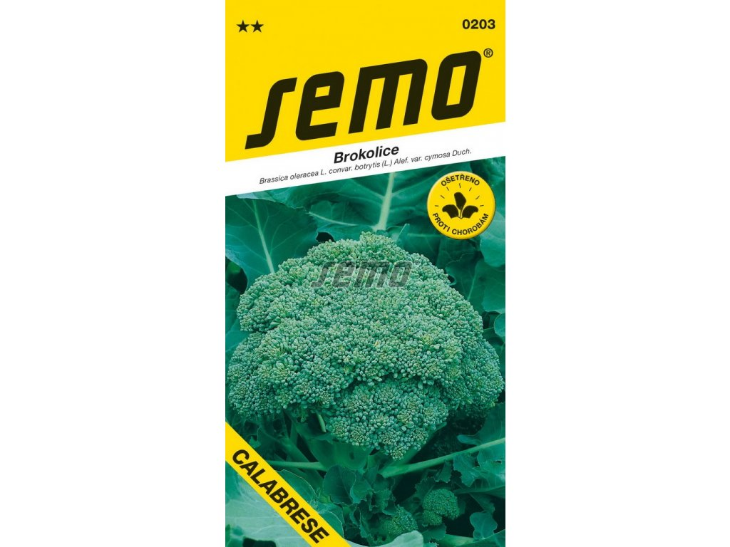 0203 semo zelenina brokolice calabrese