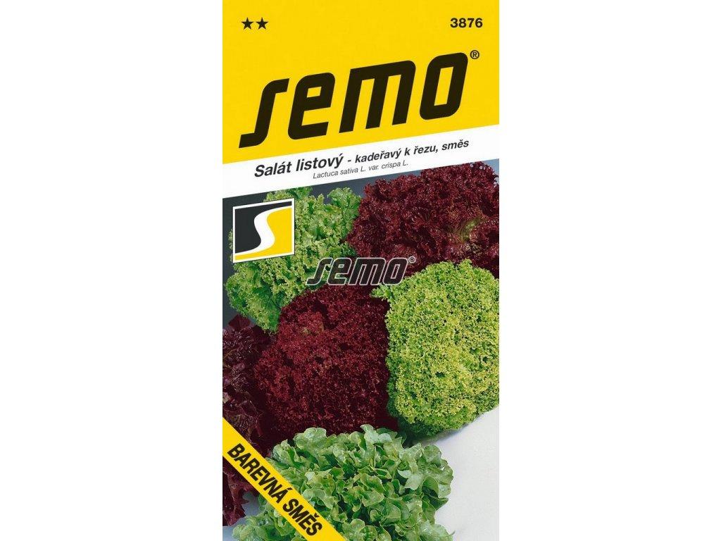 3876 semo zelenina salat listovy barevna smes