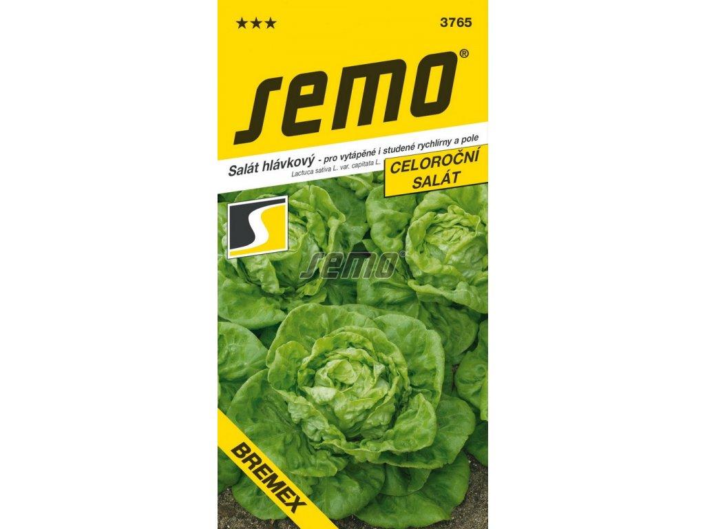 3765 semo zelenina salat hlavkovy bremex