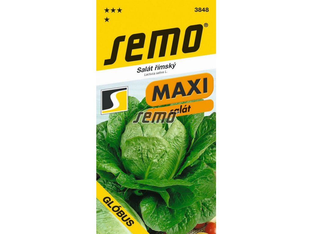 3848 semo zelenina salat rimsky globus