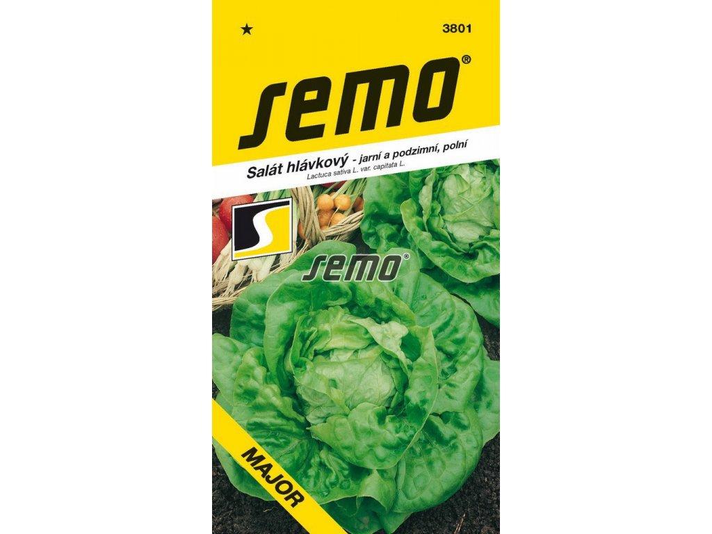 3801 semo zelenina salat hlavkovy major