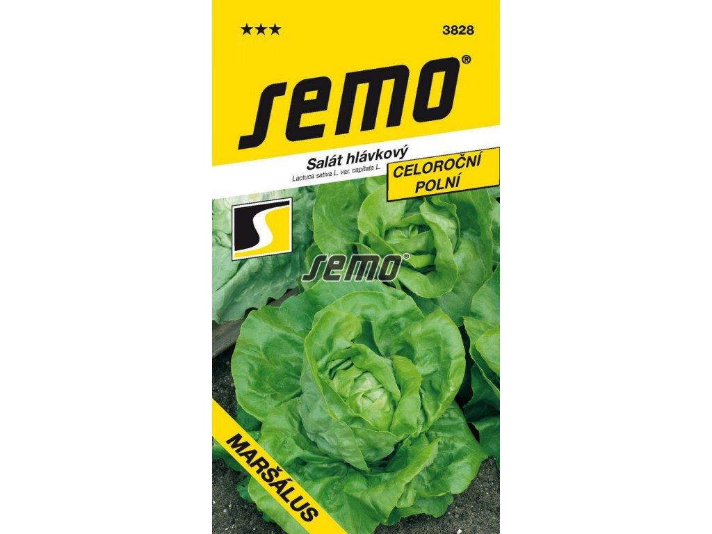 3828 semo zelenina salat hlavkovy marsalus