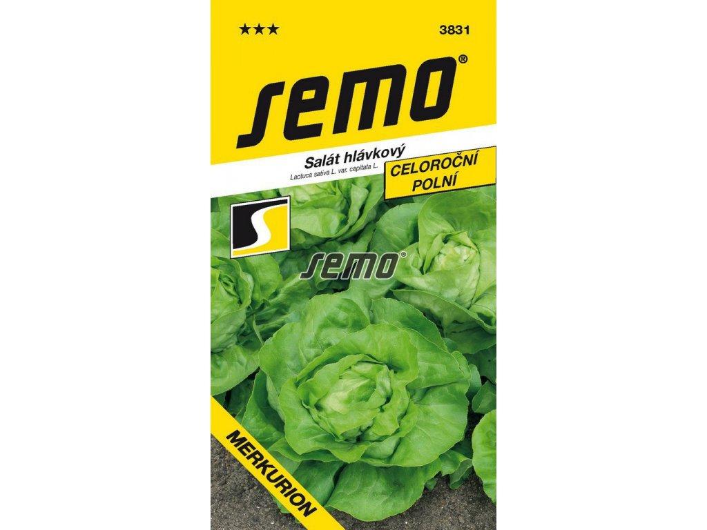 3831 semo zelenina salat hlavkovy merkurion