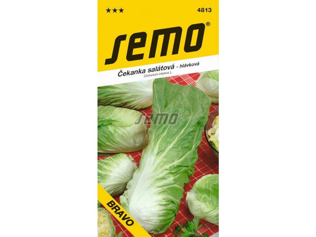 4813 semo zelenina cekanka salatova bravo