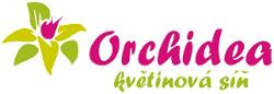 Květiny Orchidea