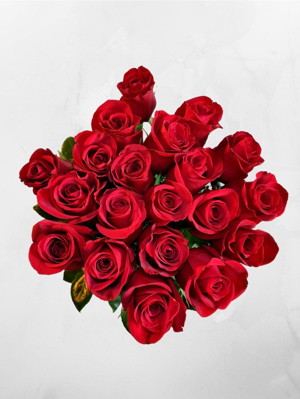 20 růží ES (1)