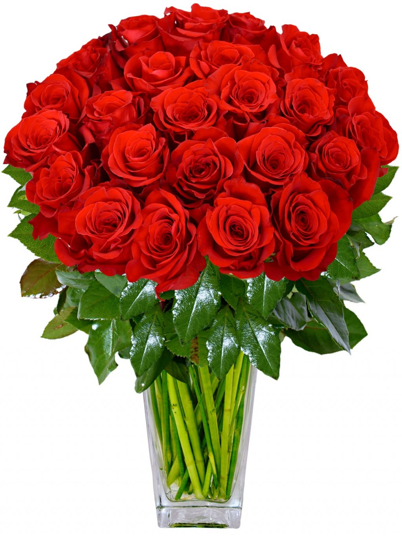 Rudé kolumbijské růže