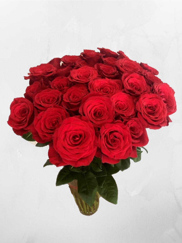 30 růží ES