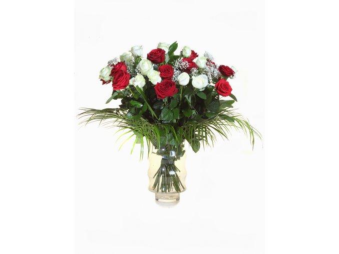 25 Růže červenobílá mix