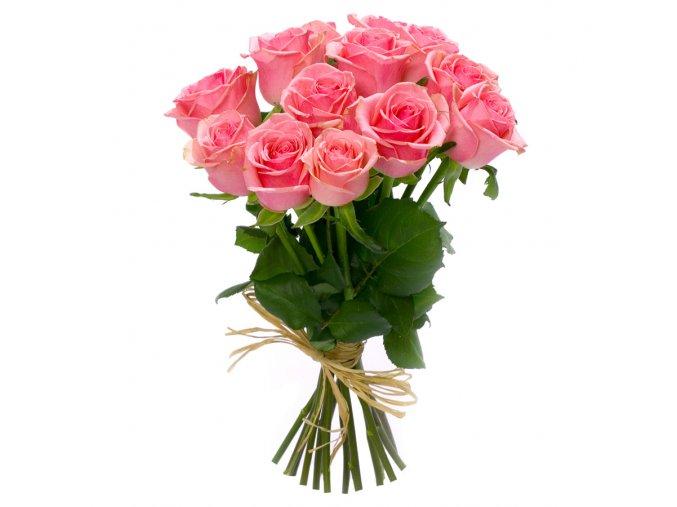 rosa 15 1190, (2)