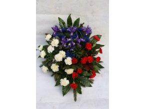 Kytice tricolora