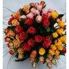 veselá růže (1)