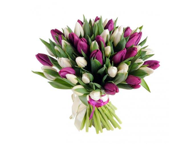 tulipany mixx
