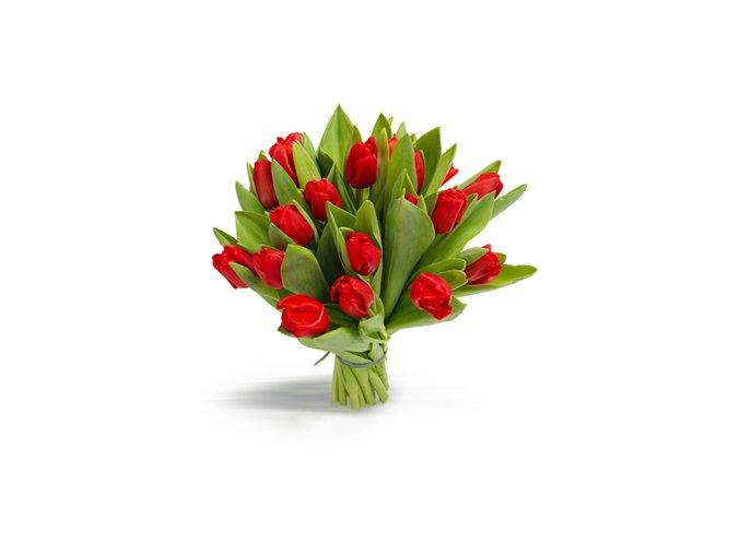i000189 tulipanovy puget c erveny 588bcbe8093b1