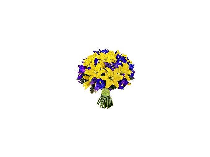 th i000180 lilie iris puget 588bc3da6b8b1