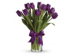 fialové tulipíny