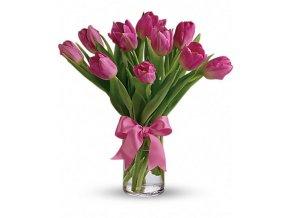 tulipany růžové