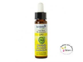 ESENCE Dr. Bach - č. 16 Honeysuckle - Lonicera caprifolium