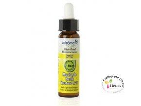 ESENCE Dr. Bach - č. 21 Mustard - Sinapis arvensis