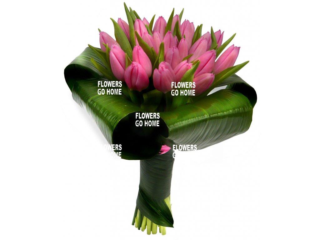Růžové tulipány - žezlo
