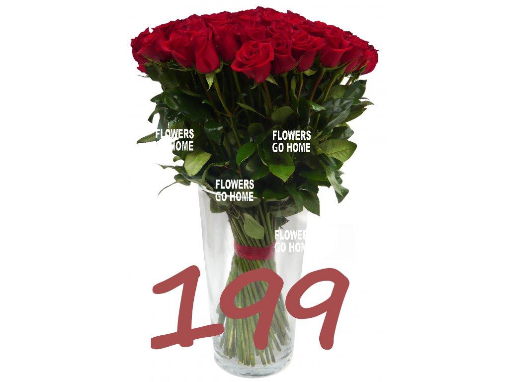 199 růží