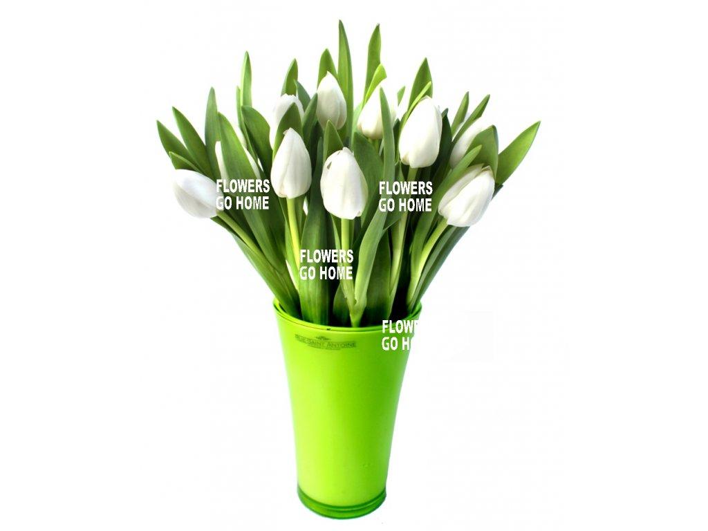 Tulipány rozvoz
