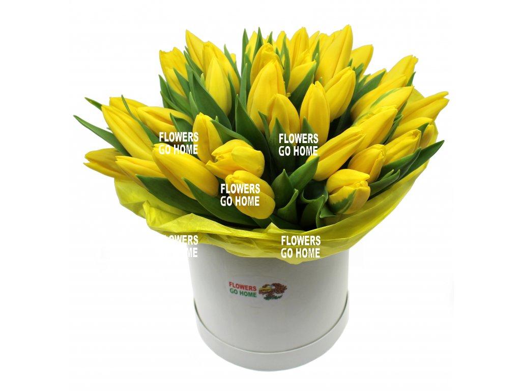 Květiny v krabici tulipány