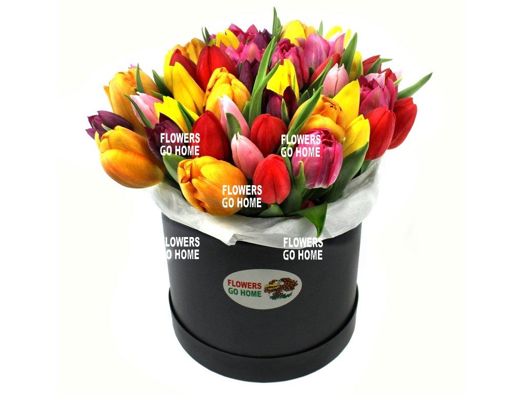 Tulipány v krabici mix barev