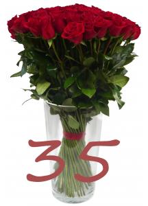 35 růží
