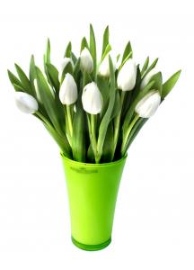 Bílé Tulipány s vázou