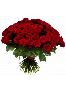 99 červených růží