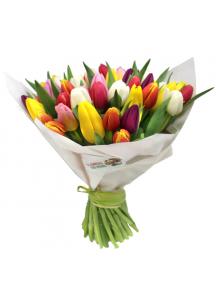 Kytice tulipánů k MDŽ