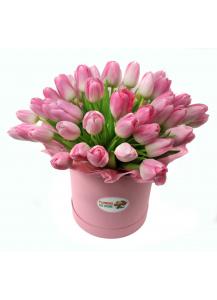 Růžové tulipány