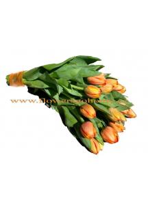 Oranžové tulipány
