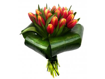 Oranžové tulipány - žezlo