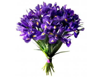 Kytice irisů