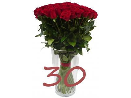 Červené růže