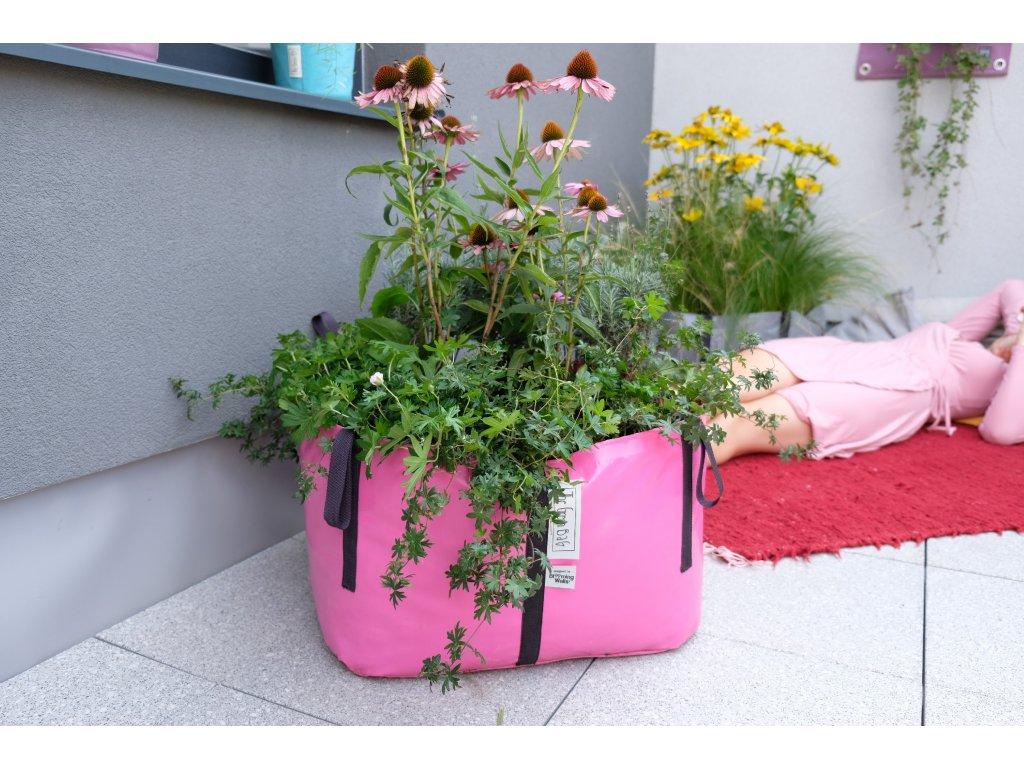 The Green Bag M trvalky na balkoně