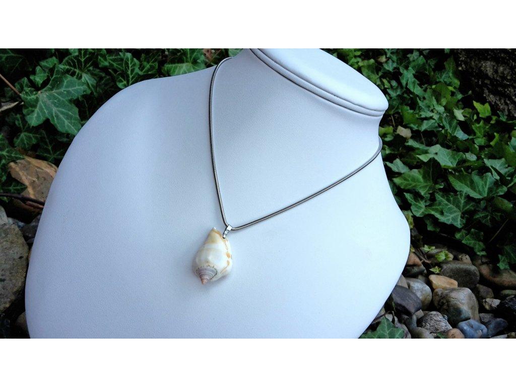1818 shell aya nahrdelnik ocel a musle
