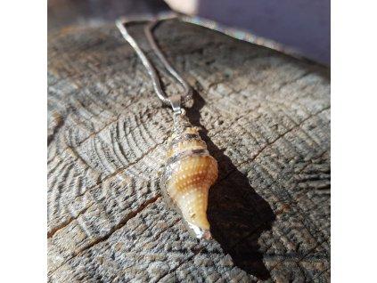 Shell Aja Náhrdelník (pravá mušle, nerez. ocel)1